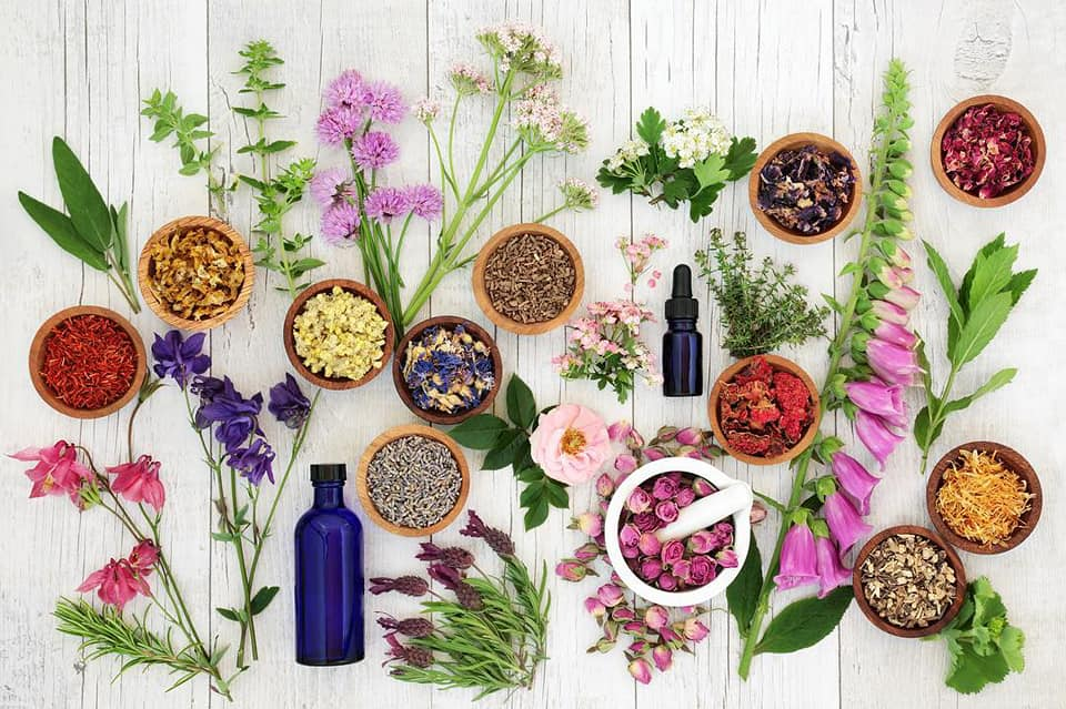Everything You Need To Know About Essential Oils For Wellness
