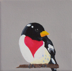 "Red-Breasted Grosbeak 6""x 6"" canvas reproduction"