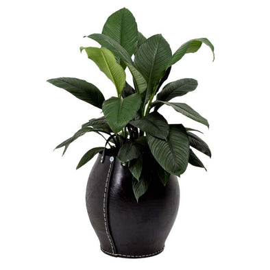 Rubber Planters with Handles