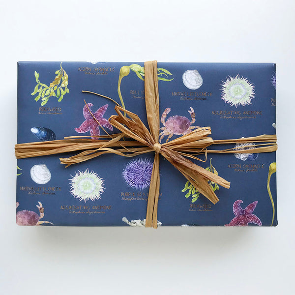 tidepool wrapping paper