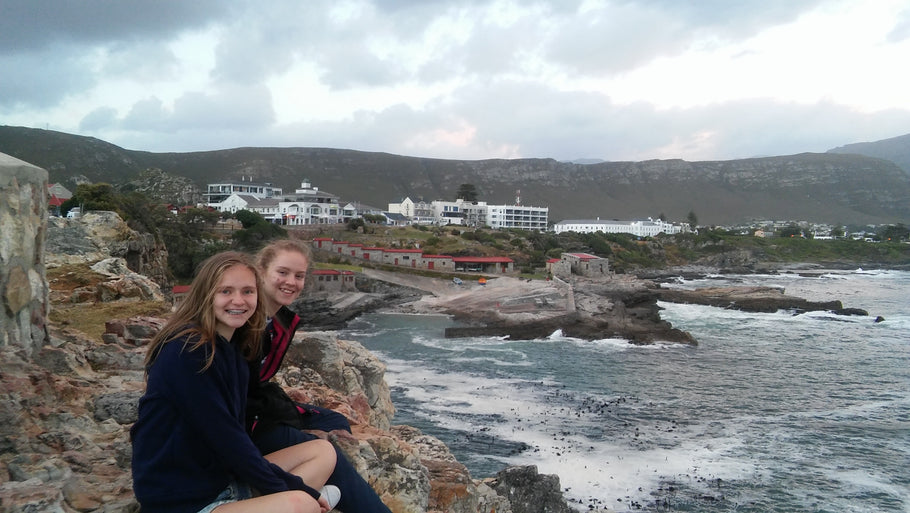 Best times to visit Hermanus
