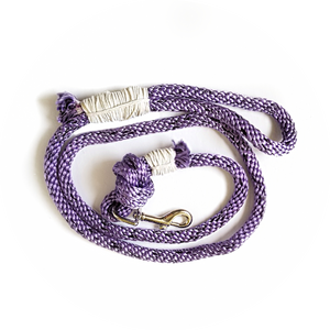 Braided Purple Leash