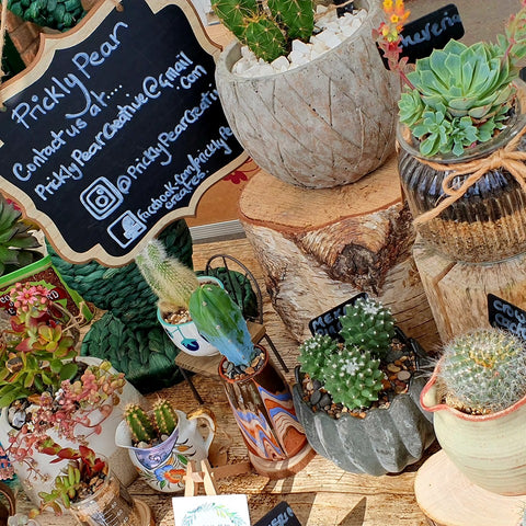 Prickly Pear Creative Products At Local Market