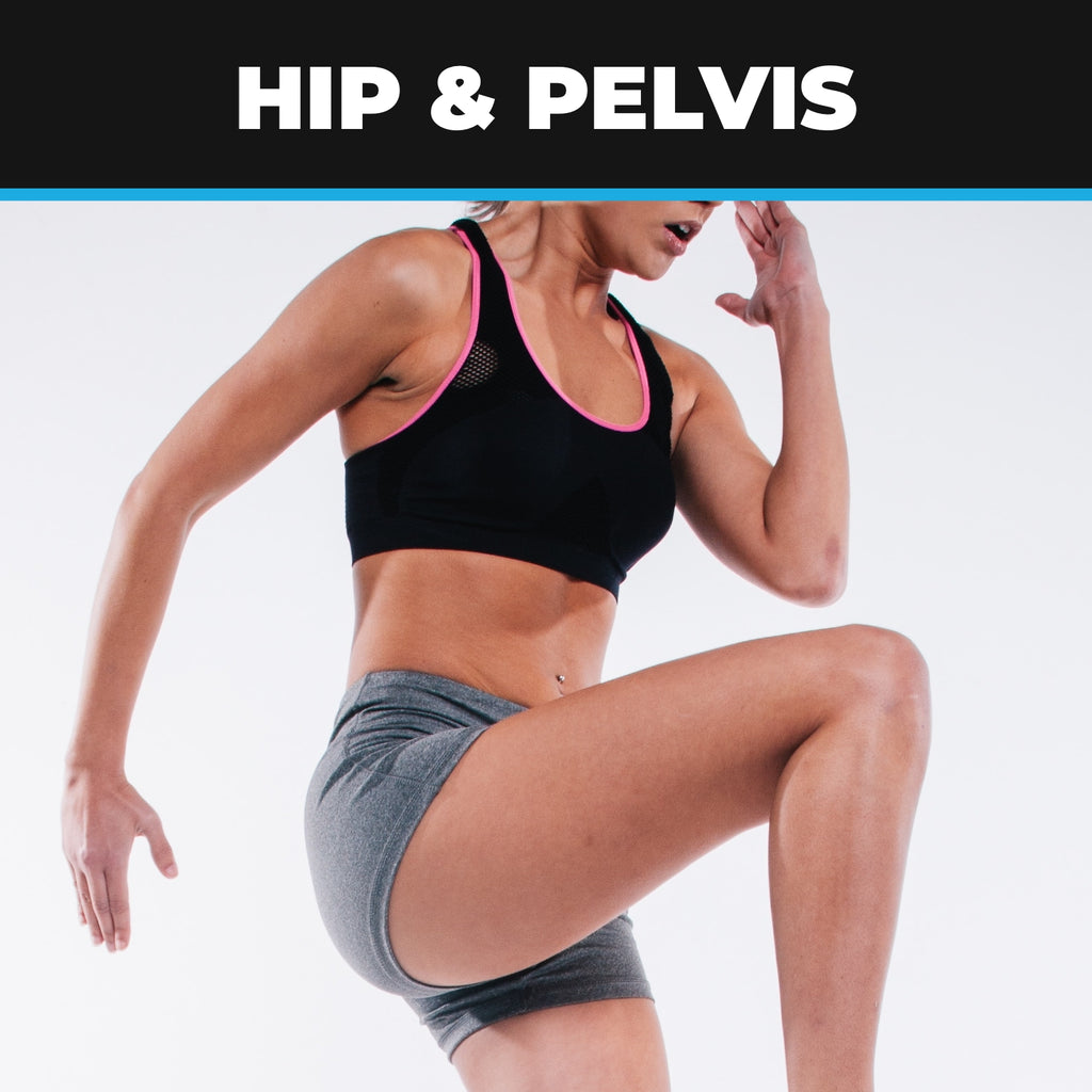 Hip & Pelvis – Anatomy, Ailments, Injuries & Exercises