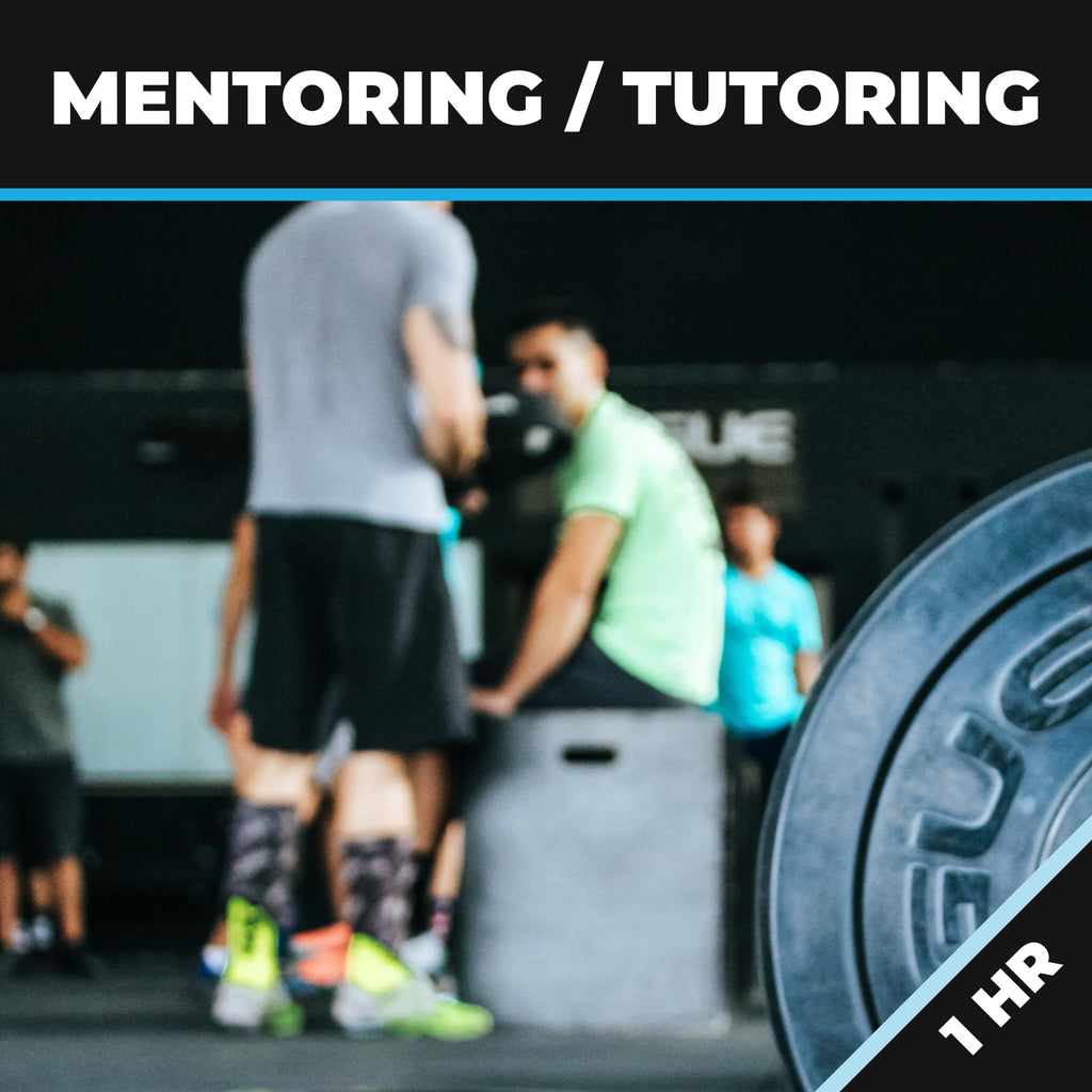 Mentoring/Tutoring 1 HR