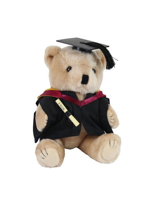 Graduation Bear - Faculty of Engineering - Bachelor