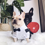 Striped Suit with Bow Tie For Small to Medium Sized Dogs - Frenchie N Pug