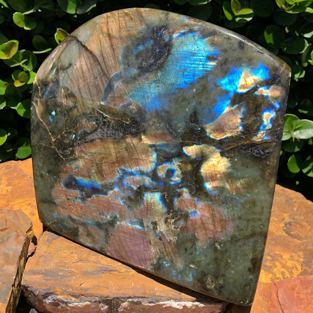 "8.23"" Polished Labradorite Crystal Mineral Specimen Slab Display from Madagascar"
