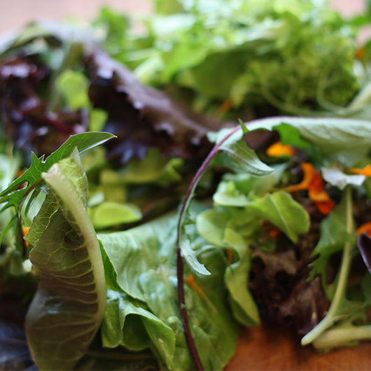 French Mesclun Mix