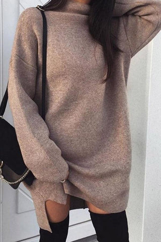 High Neck  Plain  Batwing Sleeve  Long Sleeve Casual Sweater Dress