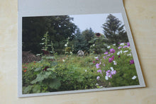Load image into Gallery viewer, There is a white horse in my garden - The Print