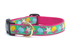 Reef Collars & Leashes