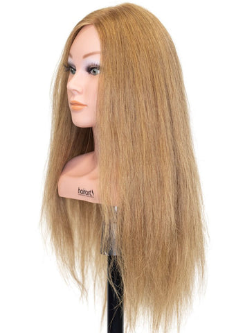 Competition 20 2x Hair Density  [100% Human Hair Mannequin]