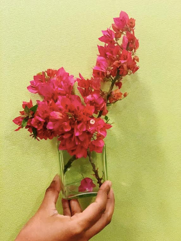 Bougainvillea subscription box, home decor subscription, flower box, Rose Bazaar, home delivery