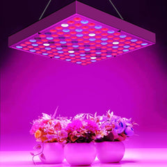 Full Spectrum Panel LED Grow Light