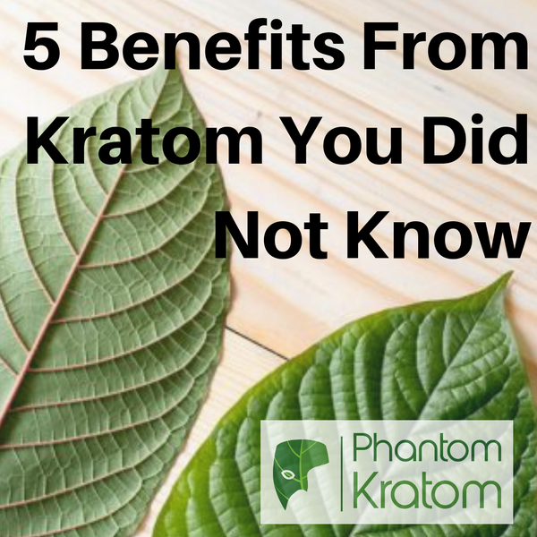 5 Benefits From Kratom You Did Not Know