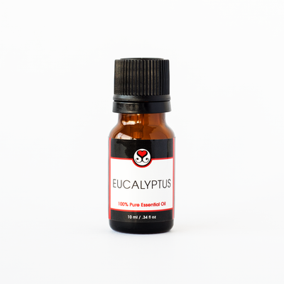 Eucalyptus (Globulus) 100% Pure Essential Oil