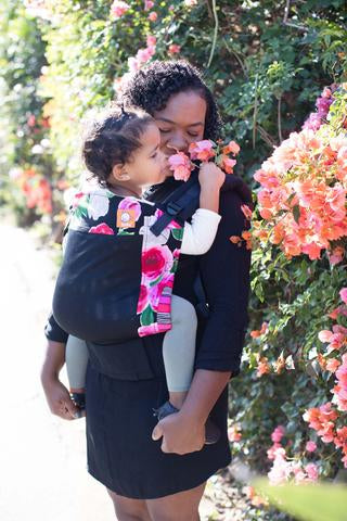 Tula Standard Baby Carriers