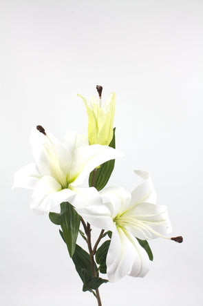 Casablanca Tiger Lily (2 heads) White 80cm Real Touch