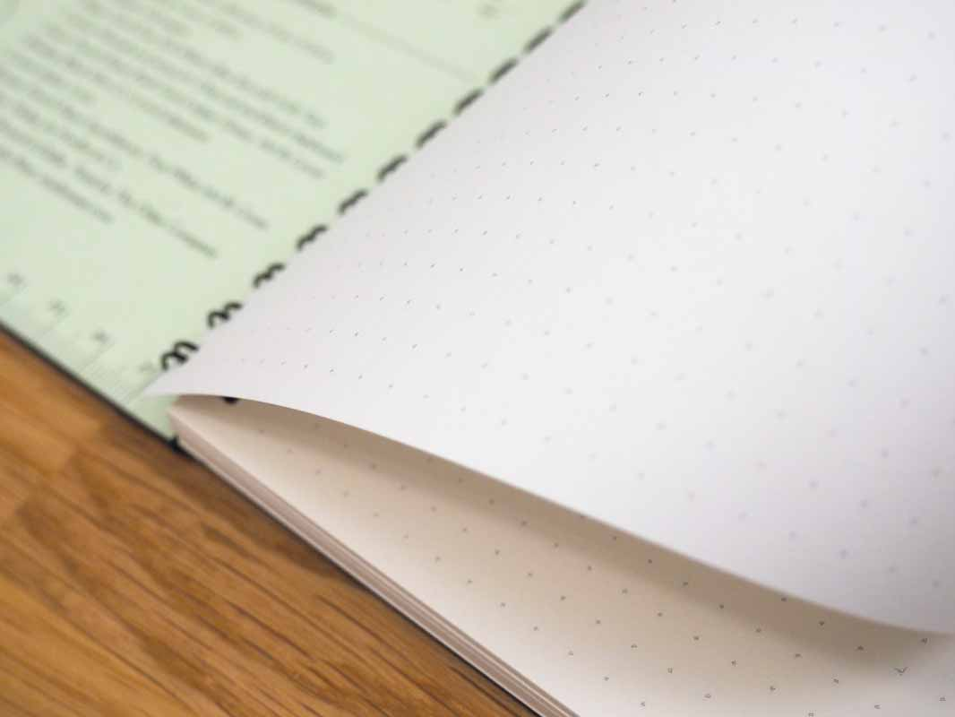 a close-up view of the dot grid on the Panobook pages.