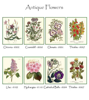 Classic Flower Notecards