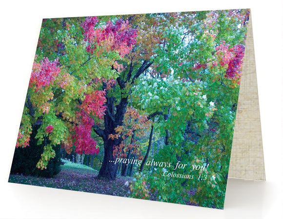 Bible Cards & Bookmarks - Praying For You Always - Package Of 10 Cards And 10 Envelopes