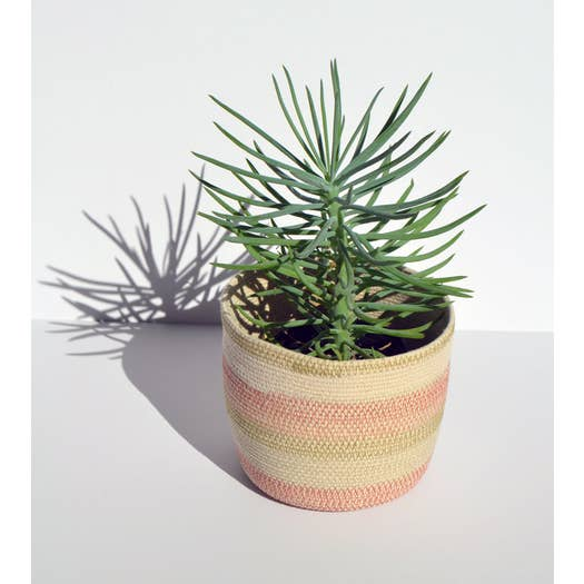 Desert Flower Bucket - AboutRuby.com