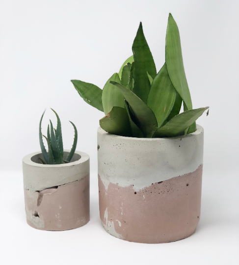 Concrete Pot in Blush Ombre - AboutRuby.com