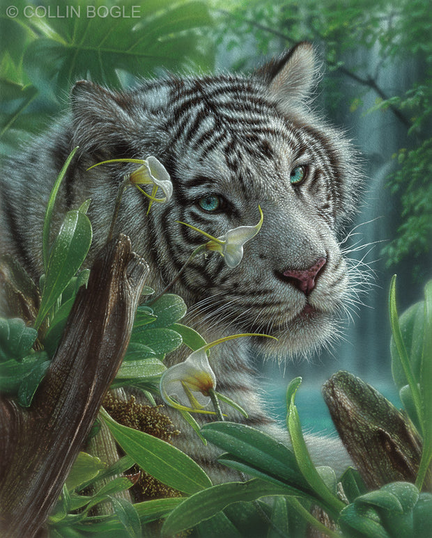White Tiger of Eden