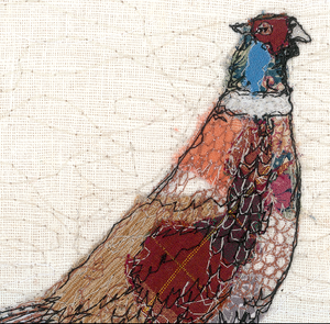 The Furtive Field Pheasant Note Cards (6 Pack)
