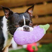 Load image into Gallery viewer, P.L.A.Y. Farm Fresh Aubergine Dog Toy