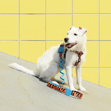 Load image into Gallery viewer, Zee Dog Ayo Ruff Dog Lead