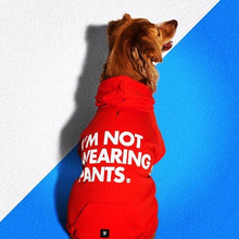Load image into Gallery viewer, Zee Dog I'm Not Wearing Pants Red Hoodie