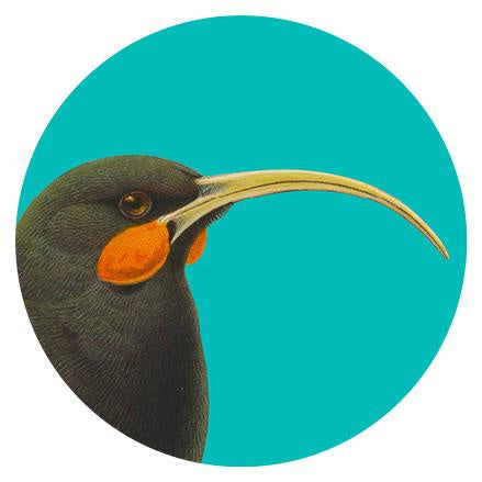 Art spot - Huia - 140mm