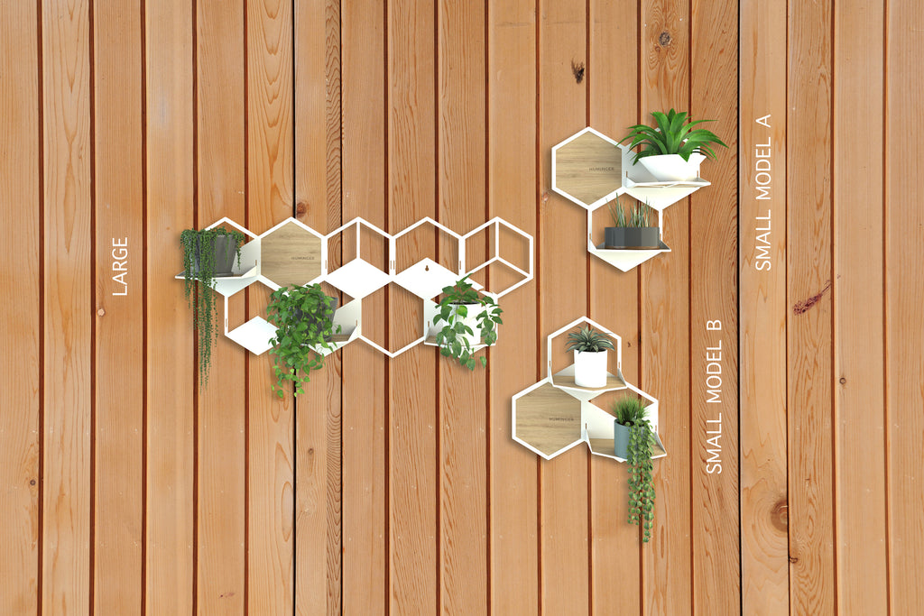 Wall Plant Holder