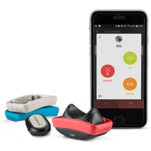 Garmin Delta Smart Dog Training System with Keep Away Tag