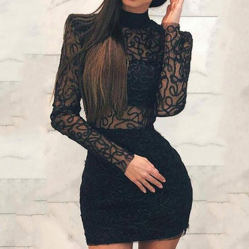 High Neck  Decorative Lace See-Through  Shimmering Powder Bodycon Dresses
