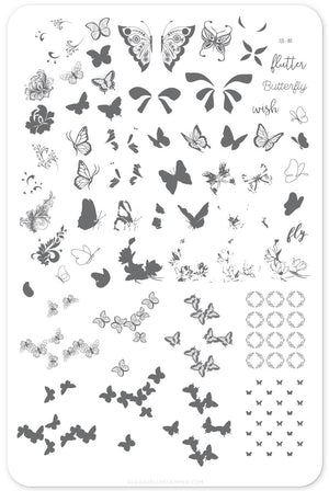 Clear Jelly Stamper- CjS-080- Butterfly Wishes