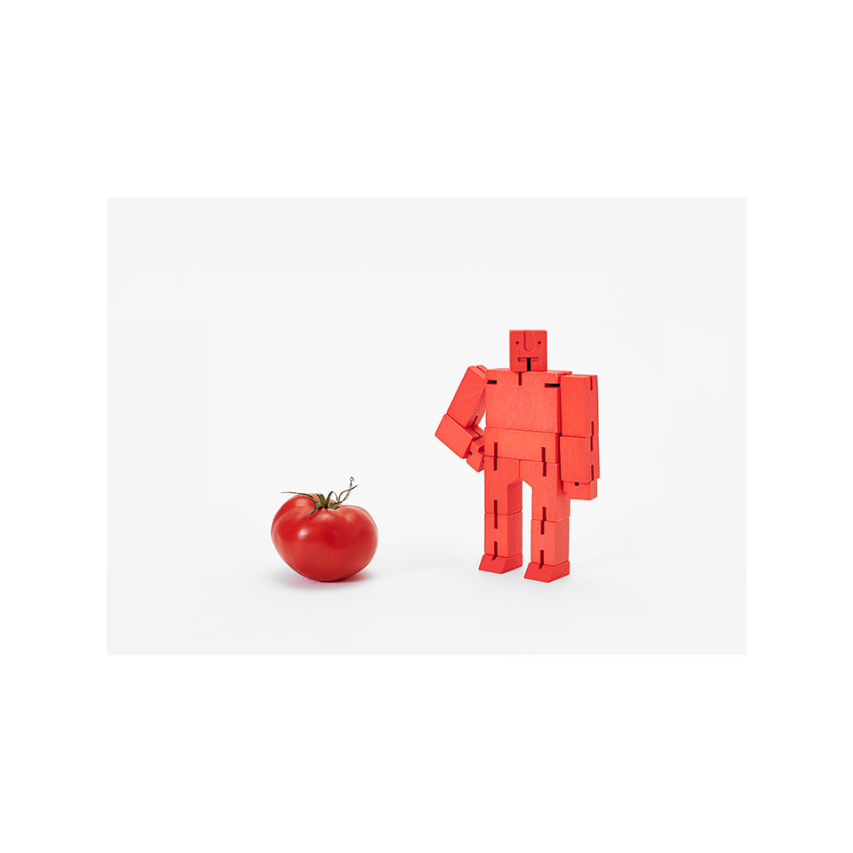 AREAWARE Cubebot Small - Red | the OBJECT ROOM