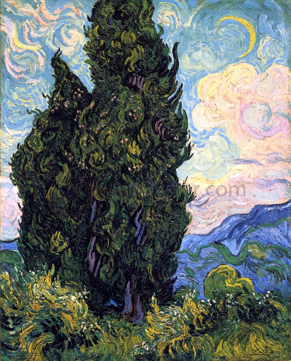 Vincent Van Gogh Cypresses - Canvas Art Print
