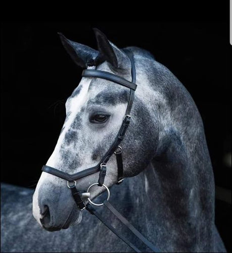 Micklem style bridle