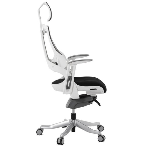 Directors Desk chair