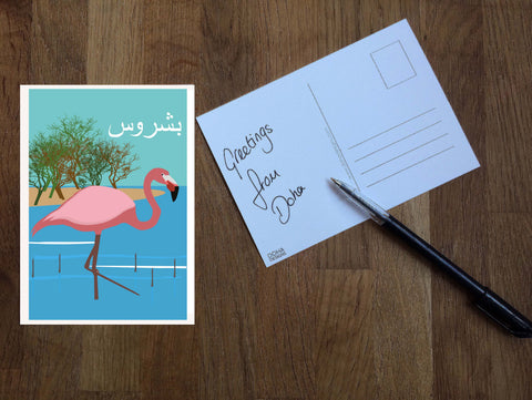 Flamingo Postcard