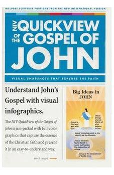NIV QuickView of the Gospel of John (Niv Quickview Bible) 9780310421436