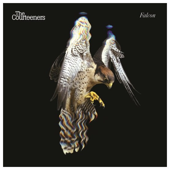 The Courteeners ‎– Falcon RSD 2019 White Colour Limited Edition Vinyl Record, Vinyl, X-Records