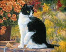 Load image into Gallery viewer, Cat Sitting Near Flowers - Piant by Numbers