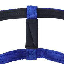 Dog Head Collar Blue (without chain)