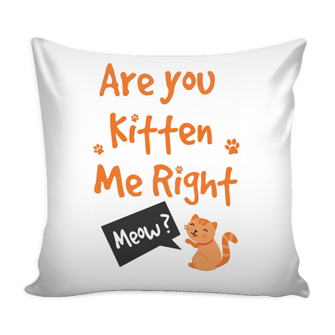 Are You Kitten Me Pillow