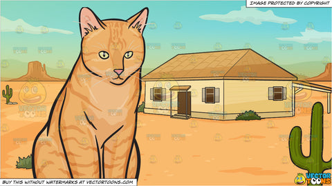 A Chubby Orange Cat and A House In The Middle Of A Desert Background