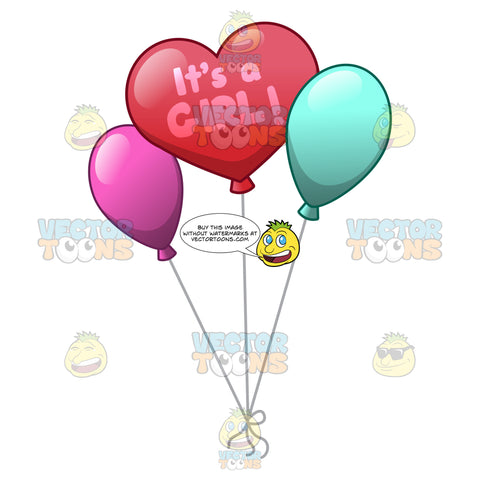 Balloon Display In Celebration Of Giving Birth To A Baby Girl